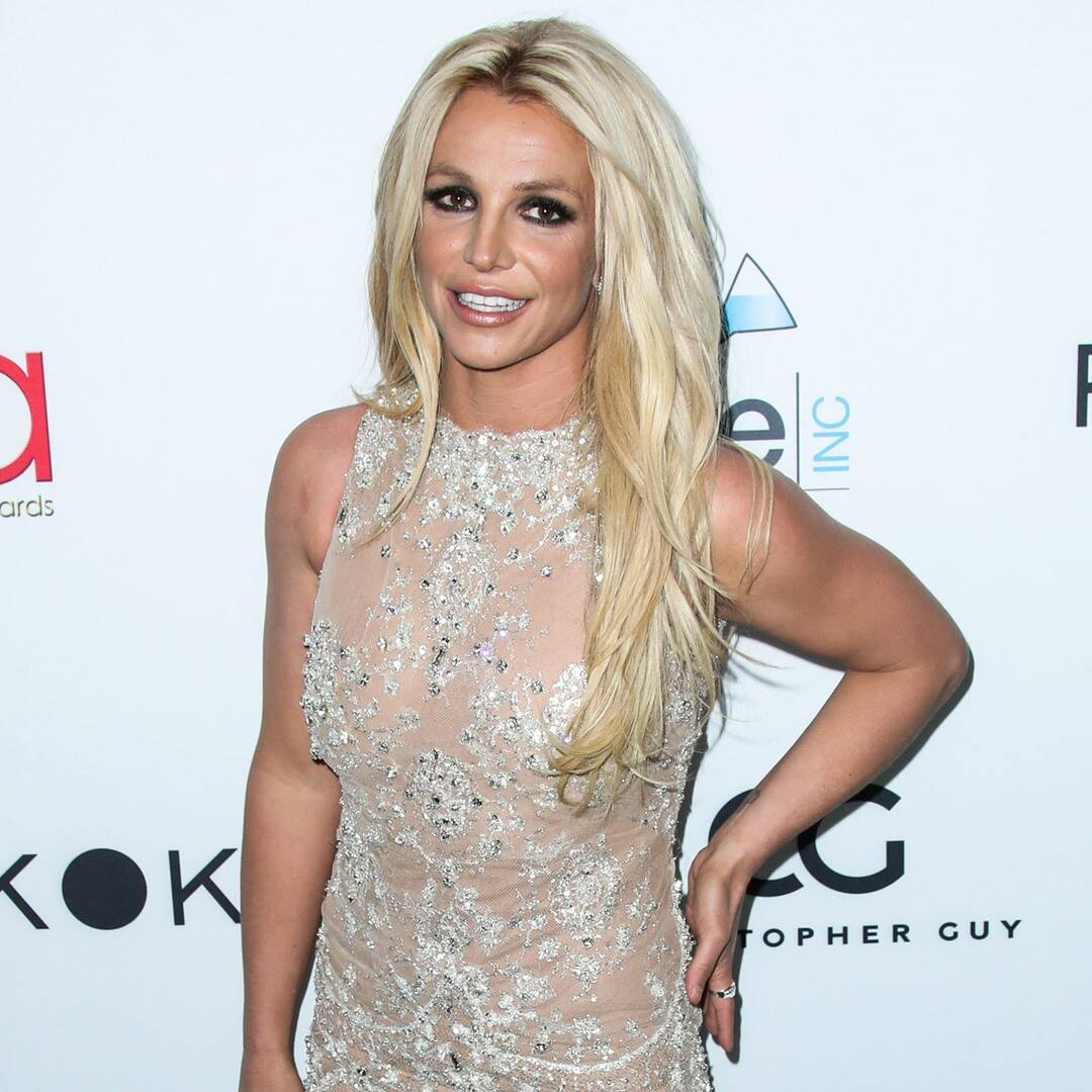 """britney-spears-plans-to-""""address-the-court-directly""""-in-next-conservatorship-hearing"""