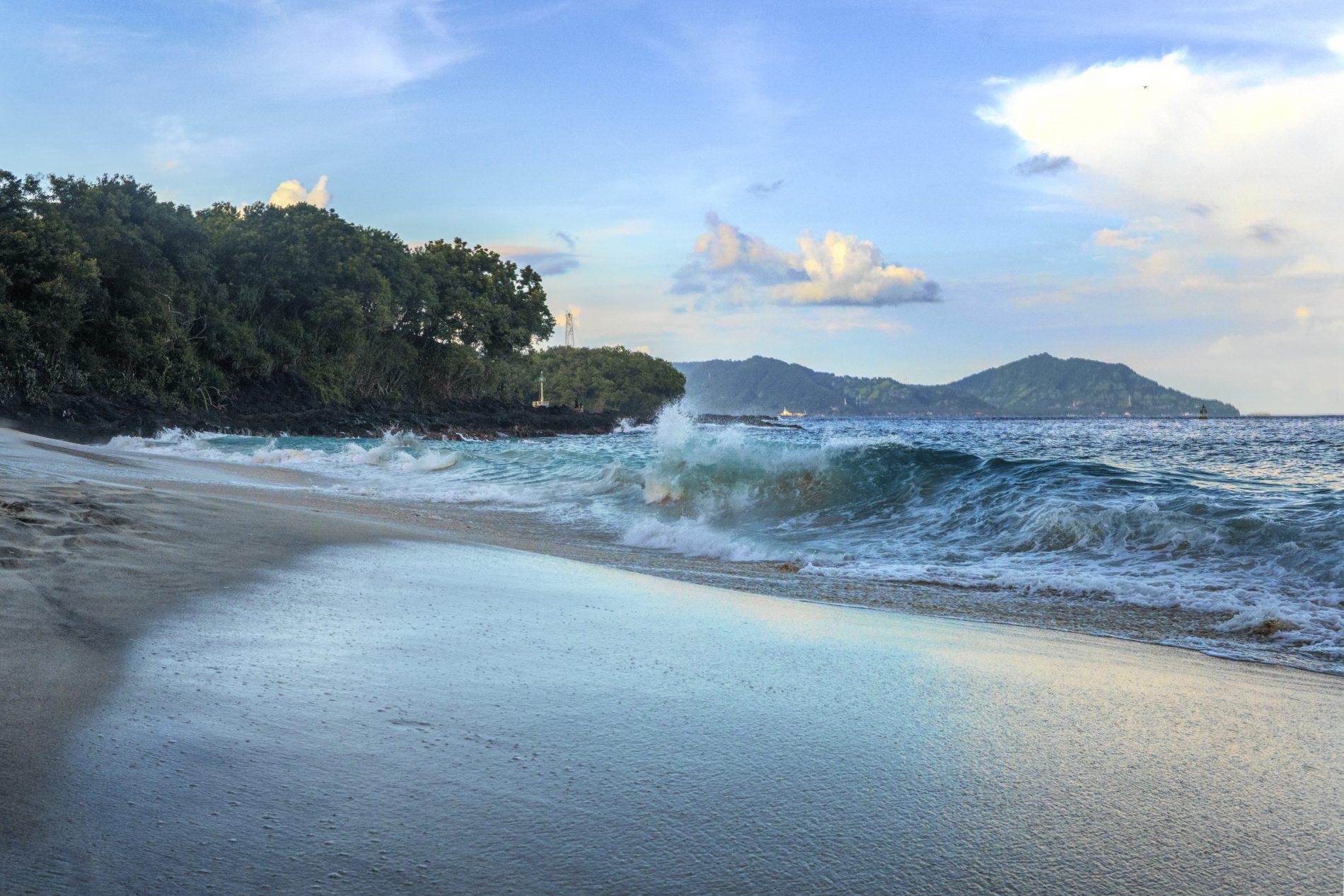 Ocean waves near trees