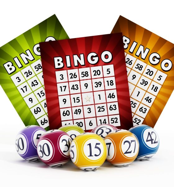 How Playing Online Bingo can Improve Your Brain Power