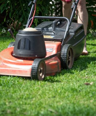 Secrets To Maintaining A Beautiful Lawn