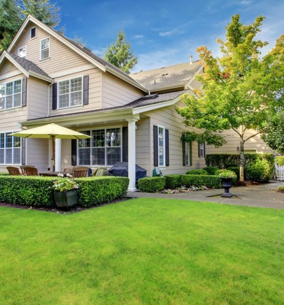 Effective Ways to Improve the Value of Your Home