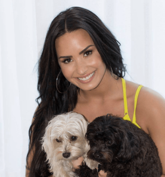 7 Celebrities and Their Pet Dogs – Best of 2021